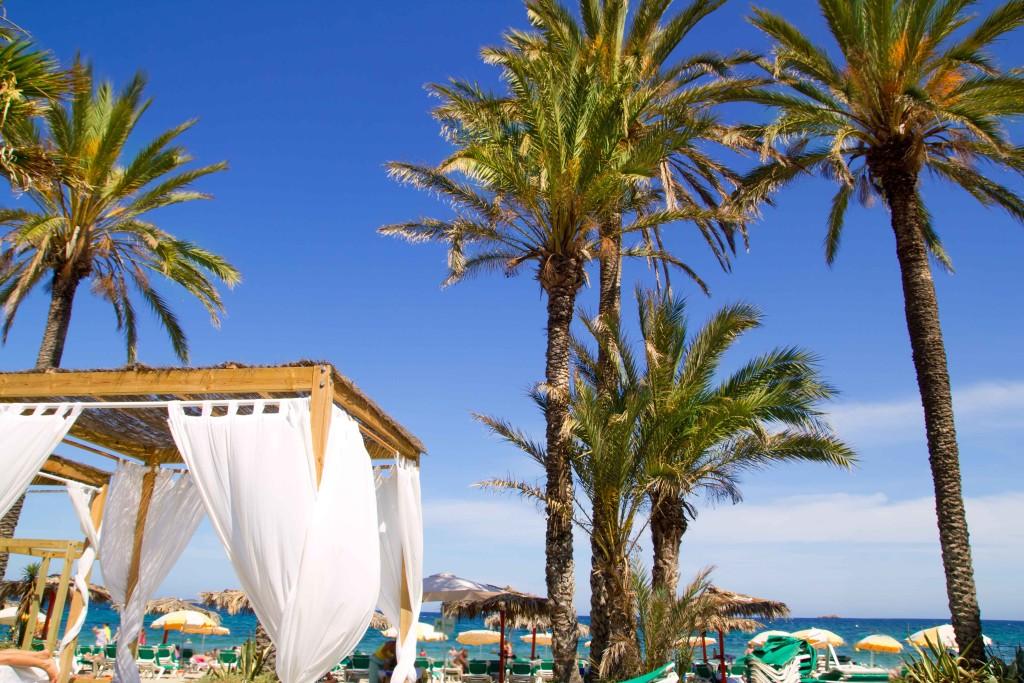 wina trip to ibiza Playa-den-bossa
